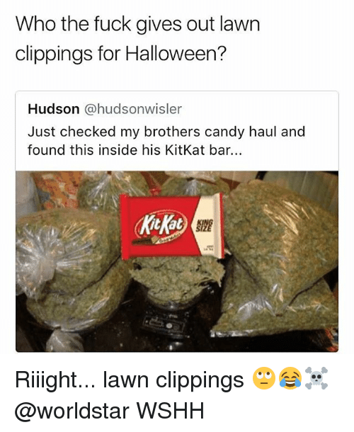 Kitkat: Who the fuck gives out lawn  clippings for Halloween?  Hudson @hudsonwisler  Just checked my brothers candy haul and  found this inside his KitKat bar. Riiight... lawn clippings 🙄😂☠️ @worldstar WSHH