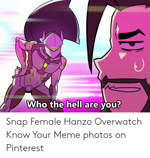 Hanzo Overwatch: Who the hell are you? Snap Female Hanzo Overwatch Know Your Meme photos on Pinterest