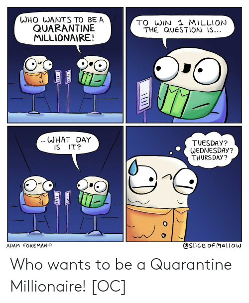 Wants: Who wants to be a Quarantine Millionaire! [OC]