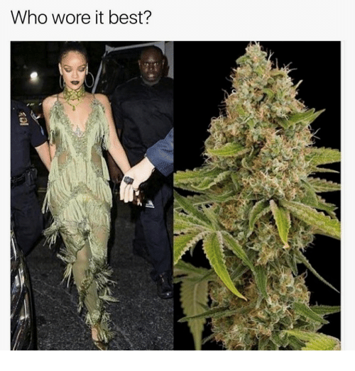 Who Wore It Best