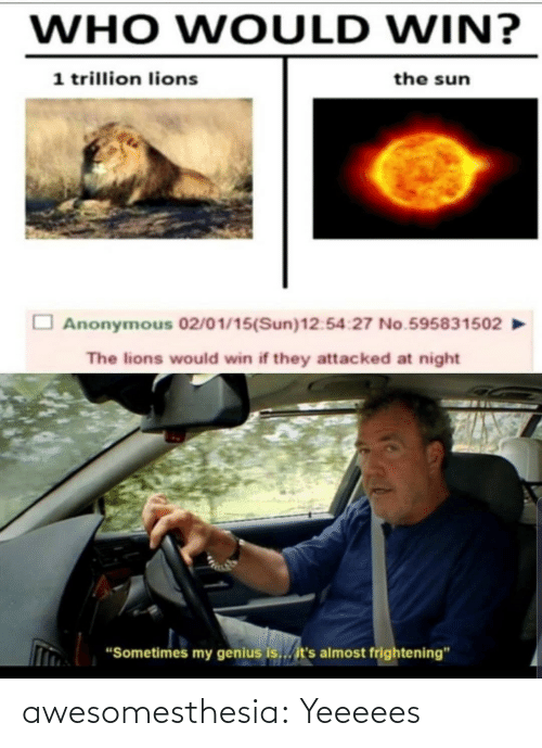 "Who Would Win: WHO WOULD WIN?  1 trillion lions  the sun  Anonymous 02/01/15(Sun)12:54:27 No.595831502  The lions would win if they attacked at night  ""Sometimes my genius is... it's almost frightening"" awesomesthesia:  Yeeeees"