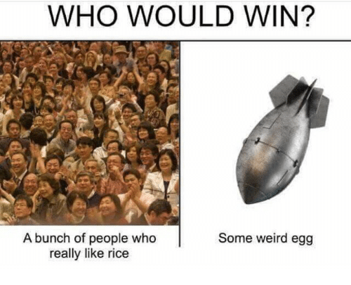 Ricing: WHO WOULD WIN?  A bunch of people who  really like rice  Some weird egg