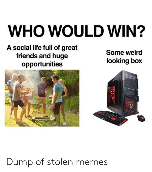 Who Would Win: WHO WOULD WIN?  A social life full of great  friends and huge  opportunities  Some weird  looking box Dump of stolen memes