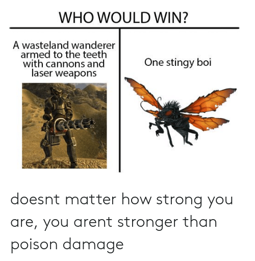 wasteland: WHO WOULD WIN?  A wasteland wanderer  armed to the teeth  with cannons and  laser weapons  One stingy boi doesnt matter how strong you are, you arent stronger than poison damage