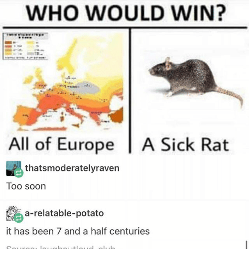 Ironic, Soon..., and Europe: WHO WOULD WIN?  All of Europe  l A Sick Rat  thats moderatelyraven  Too soon  a-relatable-potato  it has been 7 and a half centuries