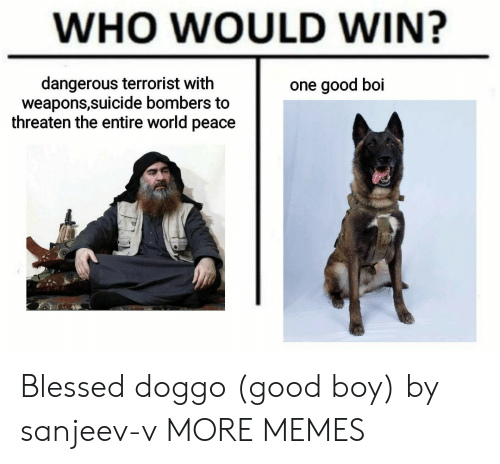 Who Would Win: WHO WOULD WIN?  dangerous terrorist with  weapons,suicide bombers to  threaten the entire world peace  one good boi Blessed doggo (good boy) by sanjeev-v MORE MEMES