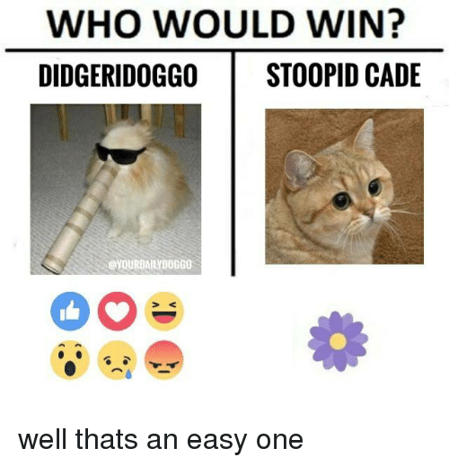 Stoopid: WHO WOULD WIN?  DIDGERIDOGGO STOOPID CADE well thats an easy one