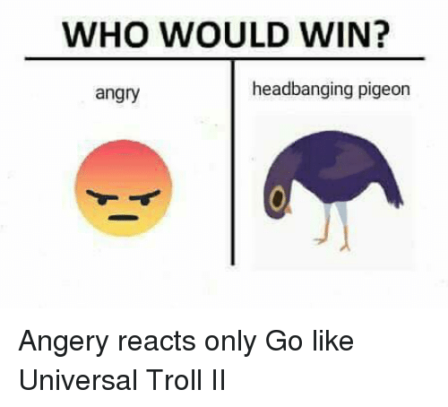 Headbanging: WHO WOULD WIN?  headbanging pigeon  angry Angery reacts only  Go like Universal Troll II