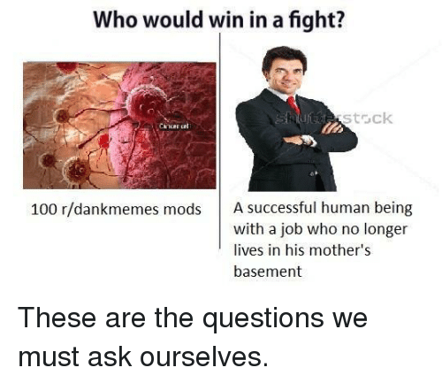 Anaconda, Mothers, and Fight: Who would win in a fight?  stack  100 r/dankmemes mods A successful human being  with a job who no longer  lives in his mother's  basement <p>These are the questions we must ask ourselves.</p>