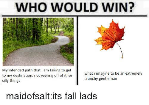 Its Fall: WHO WOULD WIN?  My intended path that I am taking to get  to my destination, not veering off of it for  SI  what i imagine to be an extremely  crunchy gentleman  silly things maidofsalt:its fall lads