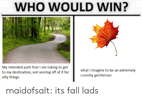 Its Fall: WHO WOULD WIN?  My intended path that I am taking to get  to my destination, not veering off of it for  SI  what i imagine to be an extremely  crunchy gentleman  silly things maidofsalt: its fall lads