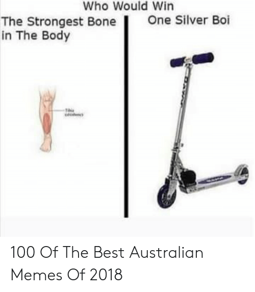 Who Would Win: Who Would Win  One Silver Boi  The Strongest Bone  in The Body 100 Of The Best Australian Memes Of 2018