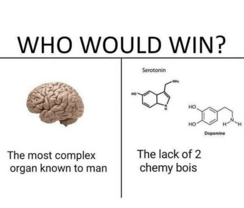 organ: WHO WOULD WIN?  Serotonin  NH2  HO  но  HO  Dopamine  The lack of 2  chemy bois  The most complex  organ known to man