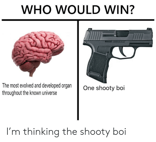 sig sauer: WHO WOULD WIN?  The most evolved and developed organ  throughout the known universe  One shooty boi  SIG SAUER I'm thinking the shooty boi