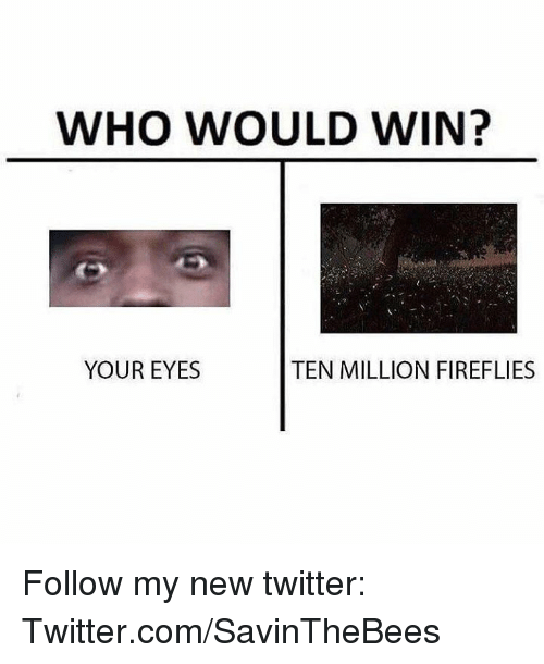 Twitter, Dank Memes, and Com: WHO WOULD WIN?  YOUR EYES  TEN MILLION FIREFLIES Follow my new twitter:   Twitter.com/SavinTheBees