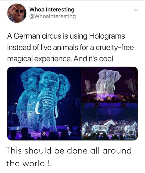 Circus: Whoa Interesting  @Whoalnteresting  A German circus is using Holograms  instead of live animals for a cruelty-free  magical experience. And it's cool This should be done all around the world !!
