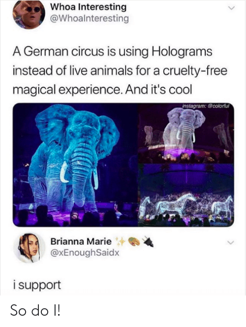 marie: Whoa Interesting  @Whoalnteresting  A German circus is using Holograms  instead of live animals for a cruelty-free  magical experience. And it's cool  instagram: @colorful  Brianna Marie  @xEnoughSaidx  isupport So do I!