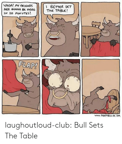 flap: WHOA ry FRIENDS  ARE GOWNA BE HERE  IN 2o MW UTES!  BETTER SET  THE TABLE  FLAP! laughoutloud-club:  Bull Sets The Table