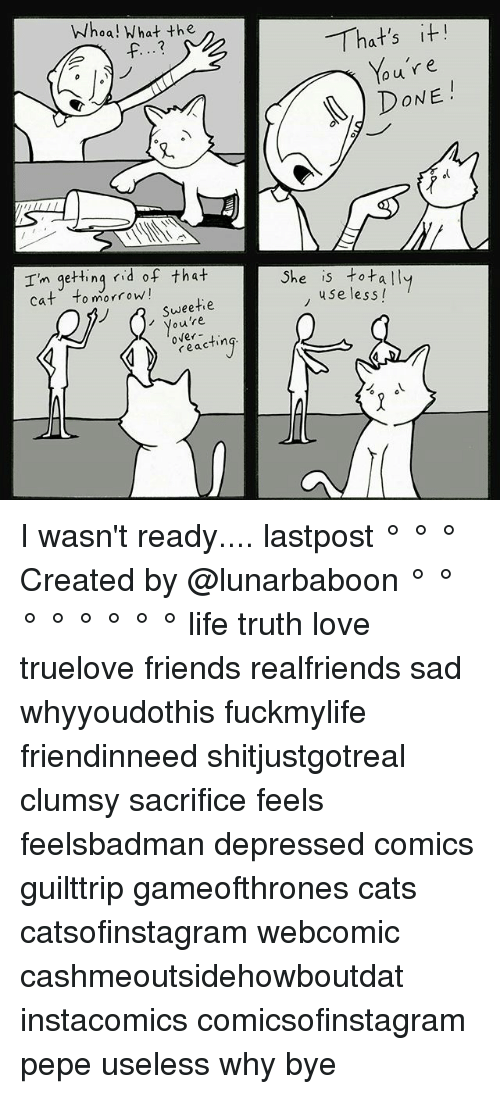 using: Whoa! What the  Im getting  rid of that  Cat o morrow!  Sweetie  ou over  ting  reac  That's it!  our e  DONE  She is totally  use less! I wasn't ready.... lastpost ° ° ° Created by @lunarbaboon ° ° ° ° ° ° ° ° life truth love truelove friends realfriends sad whyyoudothis fuckmylife friendinneed shitjustgotreal clumsy sacrifice feels feelsbadman depressed comics guilttrip gameofthrones cats catsofinstagram webcomic cashmeoutsidehowboutdat instacomics comicsofinstagram pepe useless why bye