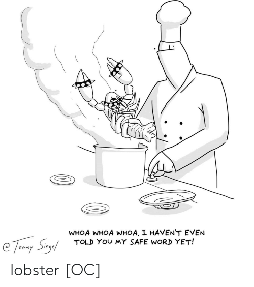 Safe Word: WHOA WHOA WHOA, I HAVEN'T EVEN  TOLD YOu MY SAFE WORD YET!  e下, Syl  omM lobster [OC]