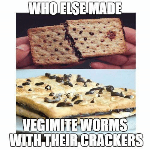 crackers: WHOELSEMADE  VEGIMITEWORMS  WITH THEIR CRACKERS