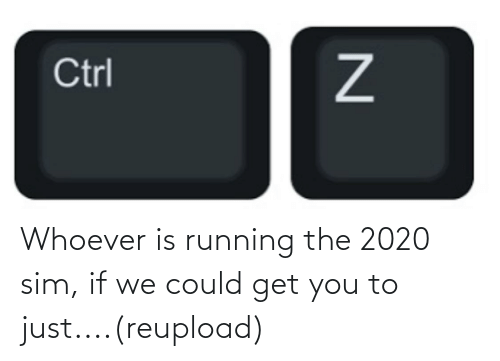 Reddit, Running, and Sim: Whoever is running the 2020 sim, if we could get you to just....(reupload)