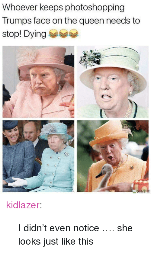 """Tumblr, Queen, and Blog: Whoever keeps photoshopping  Trumps face on the queen needs to  stop! Dying <p><a href=""""http://kidlazer.tumblr.com/post/170597593094/i-didnt-even-notice-she-looks-just-like-this"""" class=""""tumblr_blog"""">kidlazer</a>:</p>  <blockquote><p>I didn't even notice …. she looks just like this </p></blockquote>"""