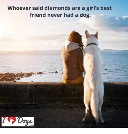 Diamonds Are A Girl S Best Friend Diamond Dogs