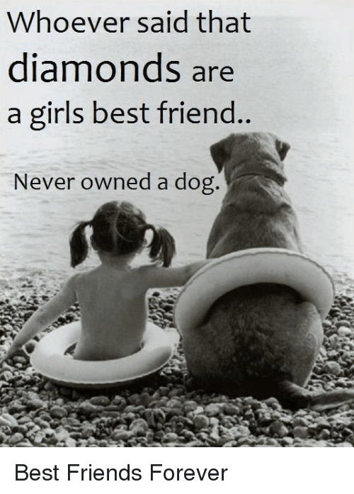 Best Friend, Friends, and Girls: Whoever said that  diamonds are  a girls .  best friend  Never owned a dog. Best Friends Forever