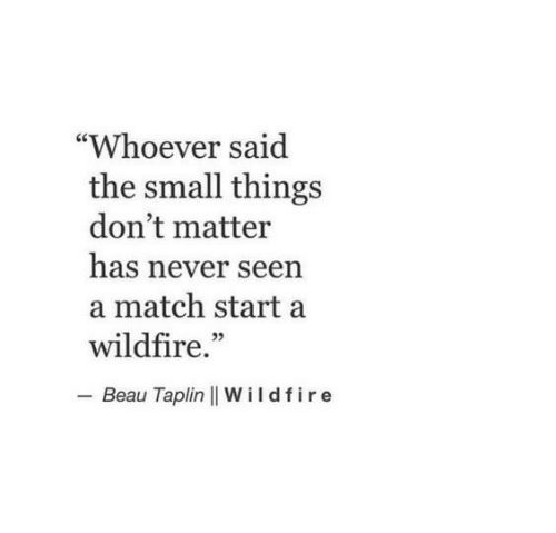 "dont matter: ""Whoever said  the small things  don't matter  has never seen  a match start a  wildfire.""  - Beau Taplin 
