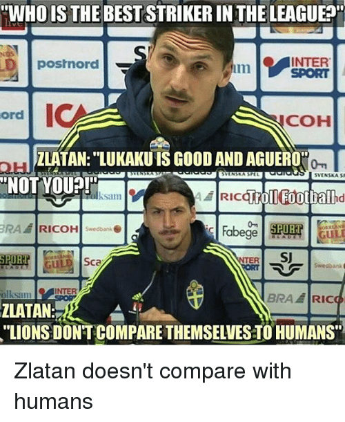 """Memes, Good, and Lions: """"WHOIS THE BESTSTRIKERINTHELEAGUE  INTER  posrnord  ord  COH  ZLATAN: LUKAKU IS GOOD AND AGUERO'  SVINSRA SPEL  SVENSKA SI  NOT YOU?!  ksam  ERA RICOH swedbanke  SU  SPORT  Sca  Swedbank  P  INTER  olksam  BRAH RIC  ZLATAN  """"LIONS DONT COMPARE THEMSELVESTO HUMANS"""" Zlatan doesn't compare with humans"""