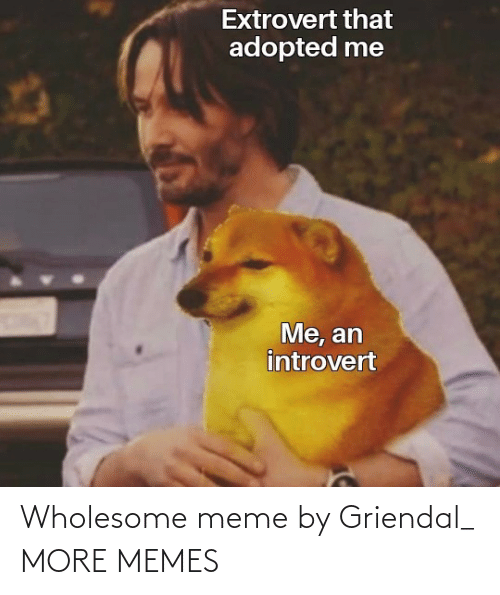 meme: Wholesome meme by Griendal_ MORE MEMES