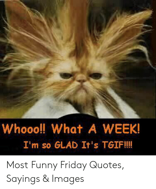 25 Best Memes About Funny Friday Quotes Funny Friday