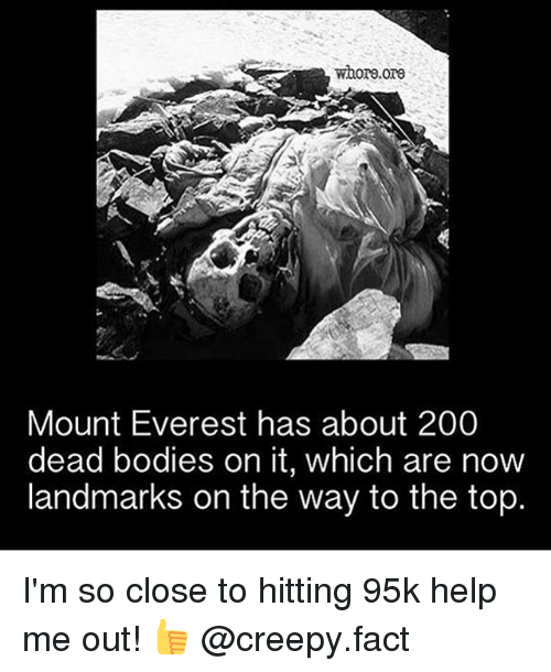 Memes, 🤖, and Everest: whore ore  Mount Everest has about 200  dead bodies on it, which are now  landmarks on the way to the top. I'm so close to hitting 95k help me out! 👍 @creepy.fact