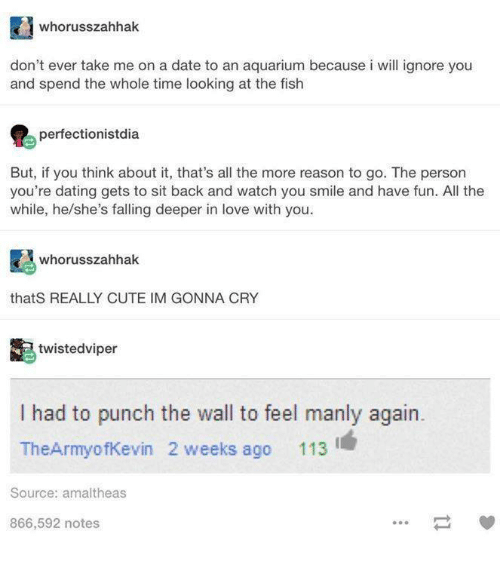 Punch The Wall