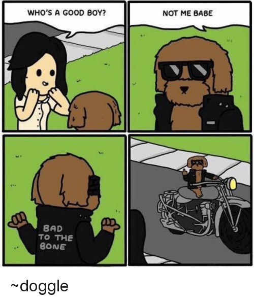 Bad To The Bone: WHO'S A GOOD BOY?  BAD  TO THE  BONE  NOT ME BABE ~doggle