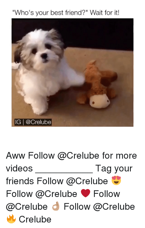 "Aww, Best Friend, and Friends: ""Who's your best friend?"" Wait for it!  IG 