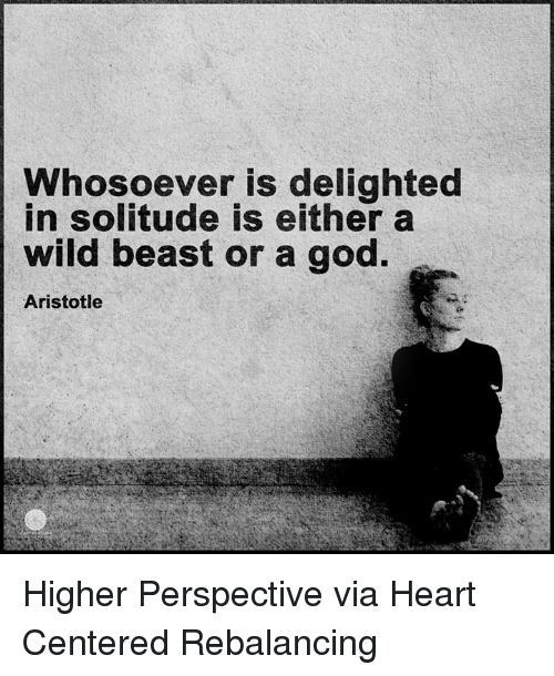 Memes, 🤖, and Delighted: Whosoever is delighted  in solitude is either a  wild beast or a god.  Aristotle Higher Perspective via Heart Centered Rebalancing