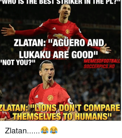 """Memes, 🤖, and Pll: WHU IS THE BESI STRIKER IN THE PLL  ZLATAN: IIAGUERO AND  LUKAKU ARE Goopi  NOT YOU?""""  MEMESOFOOTBALL  ZLATANEI! TONS DONT coMPARE Zlatan......😂😂"""