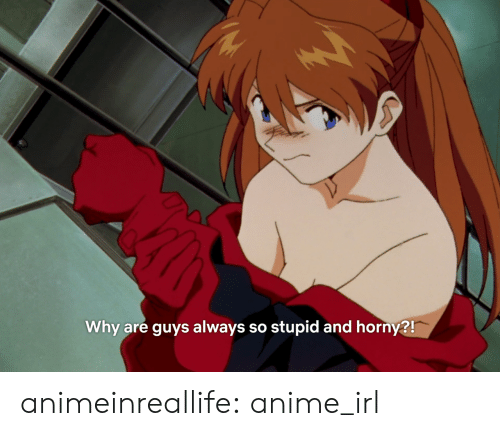 so stupid: Why are guys always so stupid and horny?! animeinreallife:  anime_irl