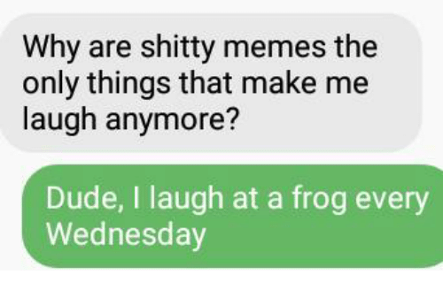 Dude, Meme, and Memes: Why are shitty memes the  only things that make me  laugh anymore?  Dude, I laugh at a frog every  Wednesday