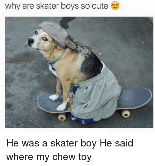 Skater Boy: why are skater boys so cute He was a skater boy He said where my chew toy