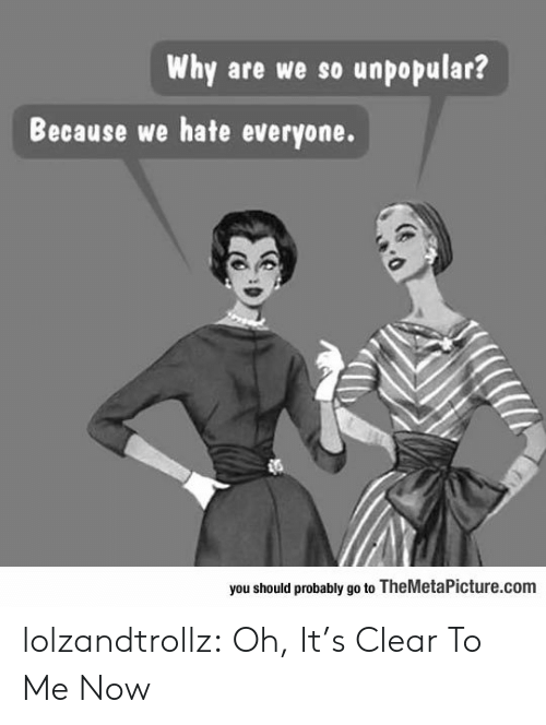 Hate Everyone: Why are we so unpopular?  Because we hate everyone.  you should probably go to TheMetaPicture.com lolzandtrollz:  Oh, It's Clear To Me Now