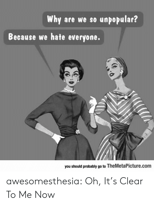 Hate Everyone: Why are we so unpopular?  Because we hate everyone.  you should probably go to TheMetaPicture.com awesomesthesia:  Oh, It's Clear To Me Now