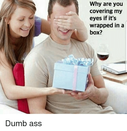 Ass, Boxing, and Dumb: Why are you  covering my  eyes if its  wrapped in a  box? Dumb ass