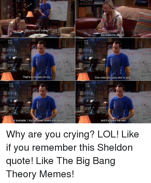 Big Bang Theory Meme: Why are you crying?  That's no reason to cry.  L MATS  r example, I cry because others are stupid  Because I'm stupid!  One cries because one is sad.  and it makes me sad Why are you crying? LOL! Like if you remember this Sheldon quote!  Like The Big Bang Theory Memes!