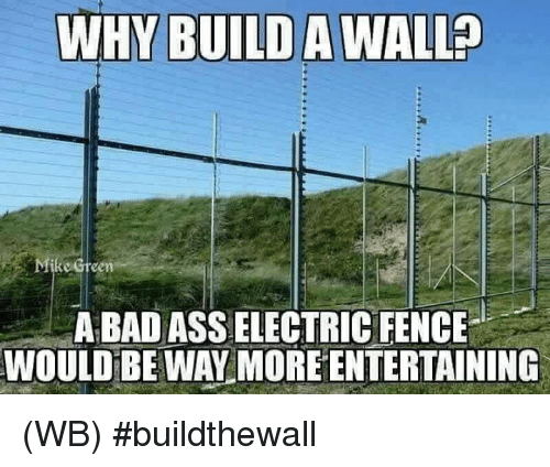 Build A Wall: WHY BUILD A WALL  e Green  A BAD ASSELECTRIC FENCE  WOULD BE WAY MORE ENTERTAINING (WB) #buildthewall