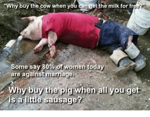 why buy the cow when you can get the milk 6185870 why buy the cow when you can get the milk for free* some say 80