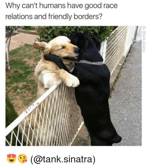 relatability: Why can't humans have good race  relations and friendly borders? 😍😘 (@tank.sinatra)