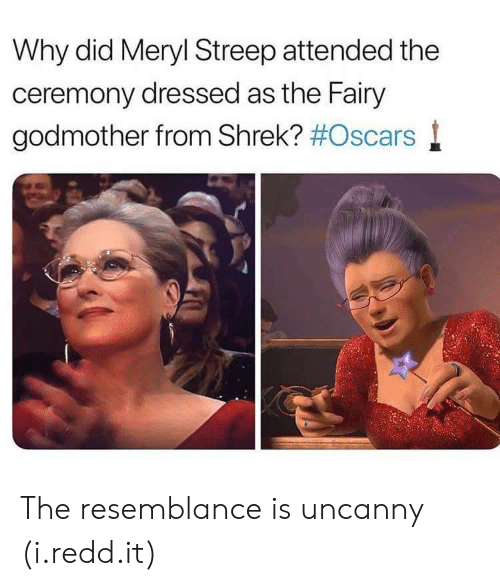 streep: Why did Meryl Streep attended the  ceremony dressed as the Fairy  godmother from Shrek? #Oscars l The resemblance is uncanny (i.redd.it)